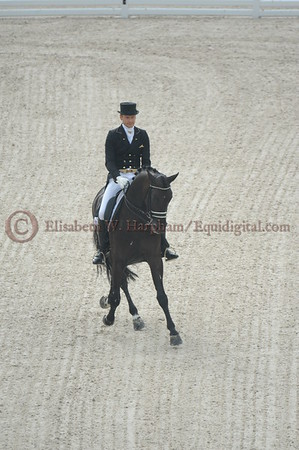 008 - 9 - Edward Gal (NED) - Glock's Voice - 2014 World Equestrian Games