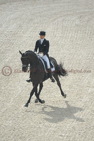 020 - 9 - Edward Gal (NED) - Glock's Voice - 2014 World Equestrian Games