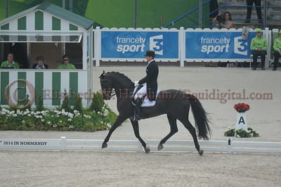 005 - 9 - Edward Gal (NED) - Glock's Voice - 2014 World Equestrian Games