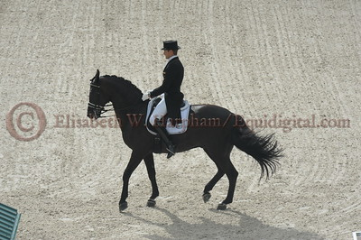029 - 9 - Edward Gal (NED) - Glock's Voice - 2014 World Equestrian Games