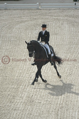 015 - 9 - Edward Gal (NED) - Glock's Voice - 2014 World Equestrian Games