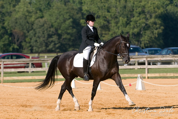 2006-2011 Schooling Shows