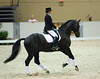 Felicitas Von Neumann-Cosel rides Where's Waldo in a demonstration about the FEI Young Horse program, narration by Scott Hassler.