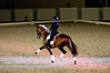 Allison Brock<br /> Andalusian stallion