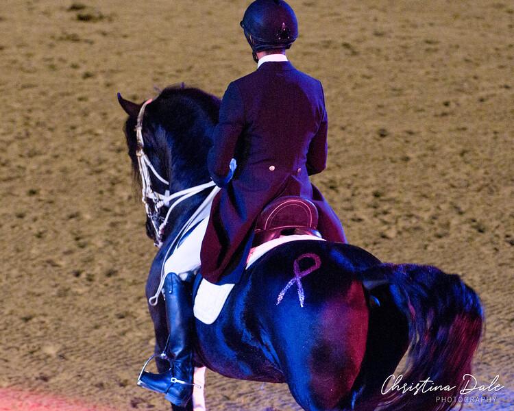 Julio Mendoza<br /> Ivan - Friesian Stallion