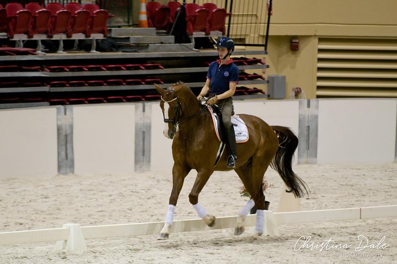 Rider: ?<br /> Horse: 8 yr old Rubicon