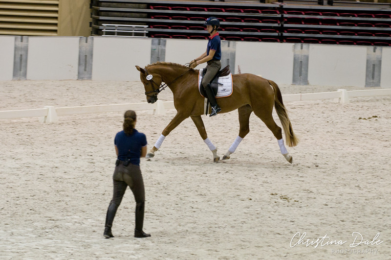 Catherine Haddad<br /> Rider: ?<br /> Horse: this is the 4yr old