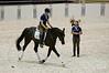 Rider: Patrick Tigchelaar<br /> Horse: 5yr old Dolce