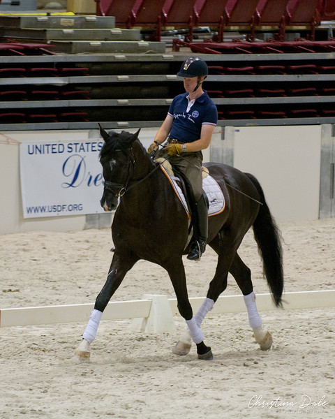 Rider: Patrick Tigchelaar<br /> Horse: 5yr old Dolce