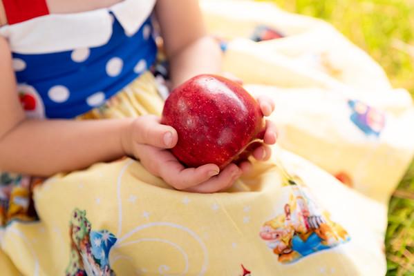 Paisley Snow White Dress-8078