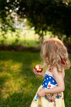 Paisley Snow White Dress-8726
