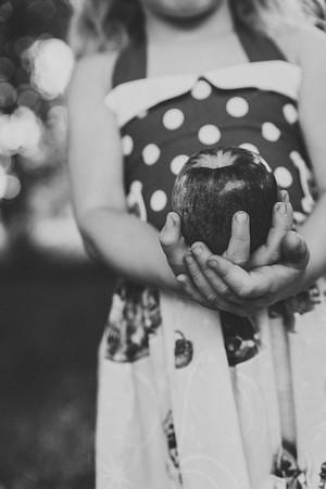 Paisley Snow White Dress-8466-2