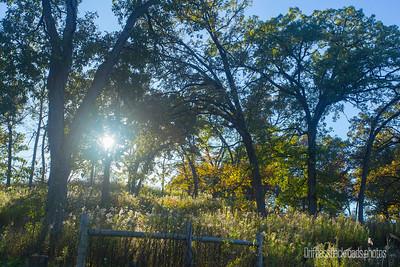 Fall Aglow