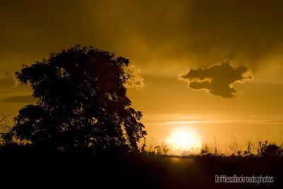 Sunset in the Rain
