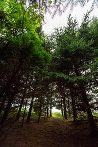 Erbe Grassland Preserve