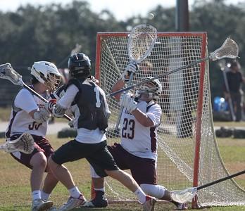 Tiger Lacrosse