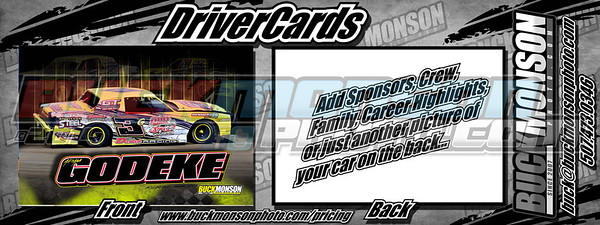 2013 DriverCards
