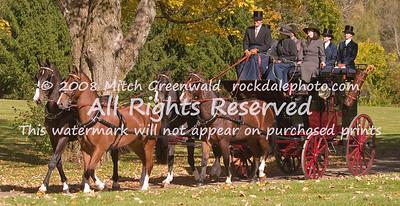 Brewster Park Drag; Sacha Rockefeller; Gelderlander; CRW_6638
