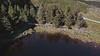 Video: Glanteenassig Forest Park. Thurs 06.05.21