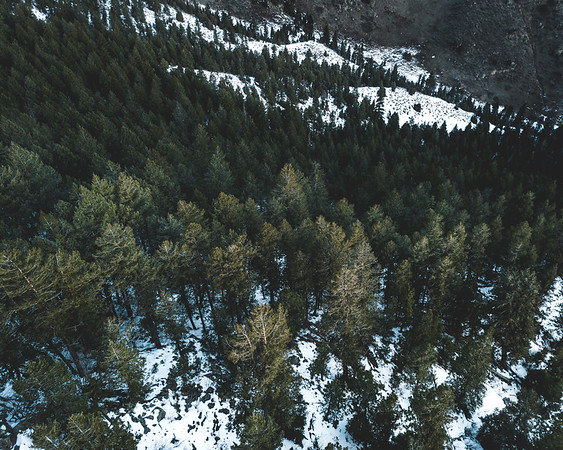 Frankieboy Photography |  Colorado Wilderness | Drone Aerial Photography