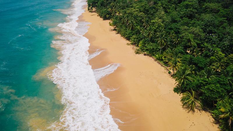 Aerial of a beach in Isla Bastimentos, Bocas del Toro, Panama