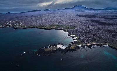 Photo from Floreana island, Galapagos, Ecuador. Copyright Paul Bertner 2016.