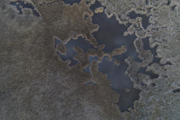 Monotone Marsh