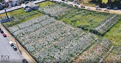 Greenhouses02