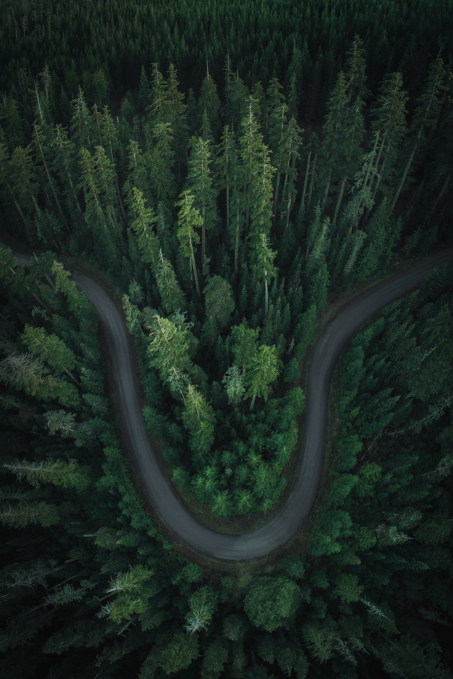 Oregon Road Aerial