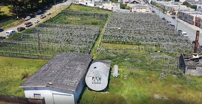 Greenhouses07