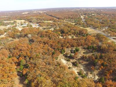 Drone shot foliage