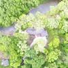 DCIM\100MEDIA\DJI_0602.JPG