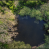 Kolk/Pond