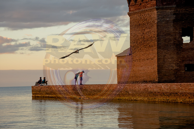 Fort Jefferson Friends on Moat Wall.jpg