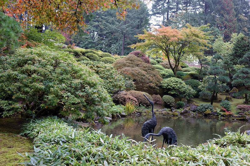 Portland Japanese Garden Oct 17th, 2017