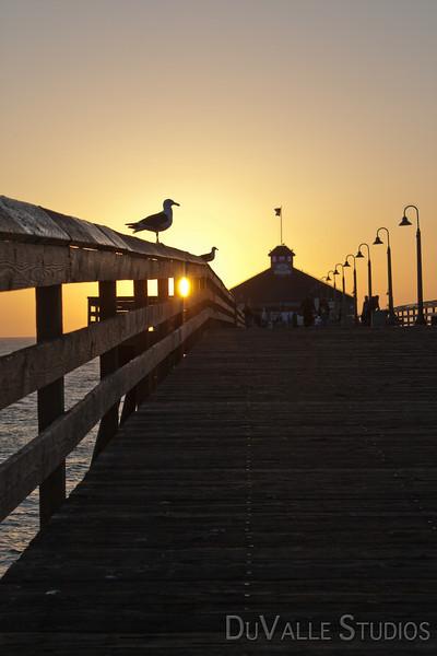 Coronado Island 2009-223