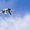 2010 Oregon Airshow-68