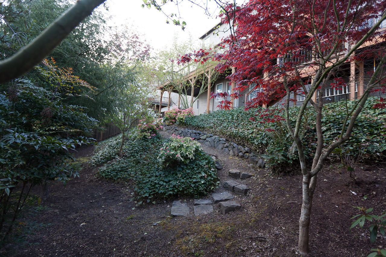 Another view of the path descending into the back yard with stonework.