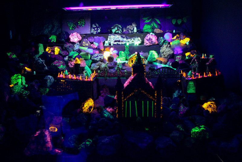 Peterson's Rock Garden 2011-6