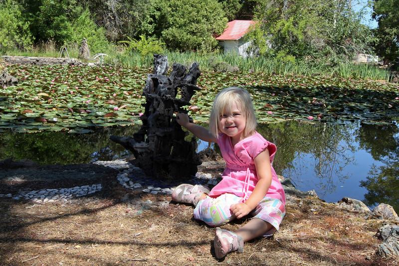 Peterson's Rock Garden 2011-15