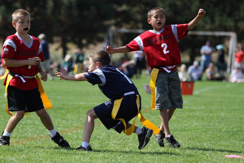 Patriots v Bucs 9.23.2012-243