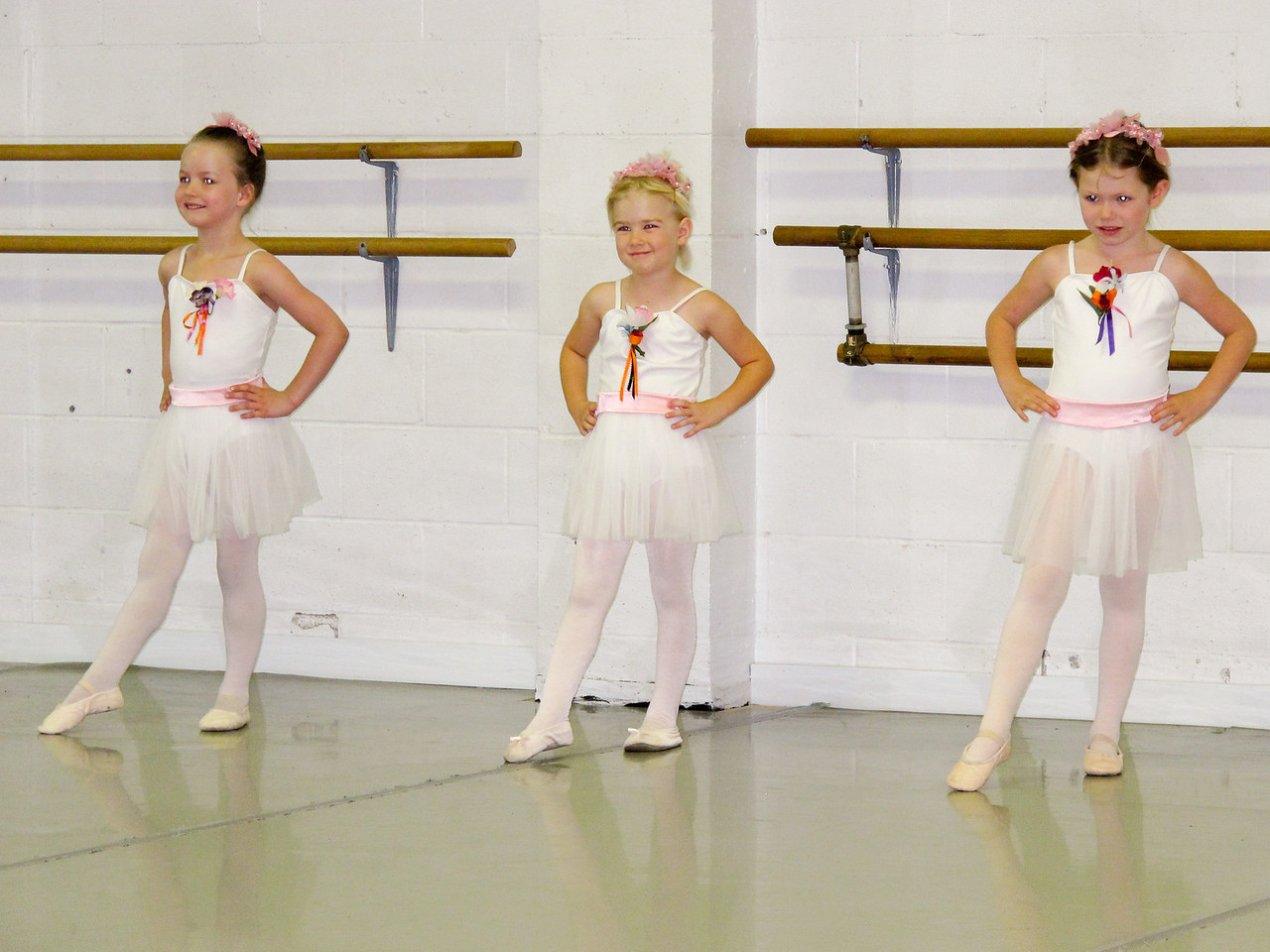 Nicole Ballet 2013-12