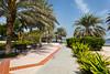 Walkways and gardens in Creek Park, Dubai, UAE.