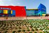 The Children's City building in Creek Park in Dubai, UAE.