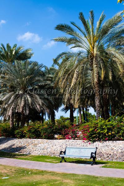 Tropical vegetation at Jumeirah Beach Park in Dubai, UAE.