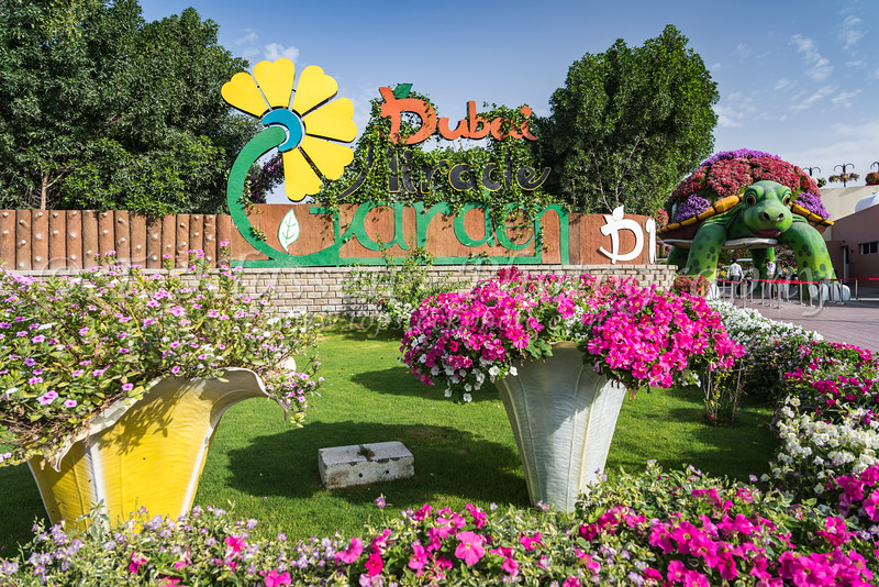 The entrance sign to the Miracle Gardens in Dubai, UAE, Middle East.