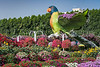 Floral parrots at the Miracle Gardens in Dubai, UAE, Middle East.