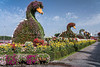 Floral ducks at the Miracle Gardens in Dubai, UAE, Middle East.