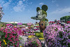 A floral mickey mouse at the Miracle Gardens in Dubai, UAE, Middle East.