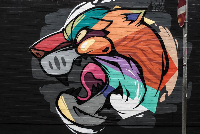 Street art Celtic Lion